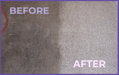 Deep carpet cleaning services in Sterling, VA