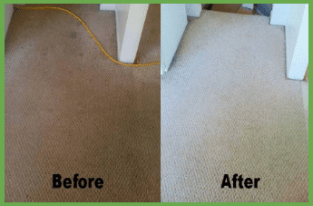Carpet cleaning services in Gaithersburg, MD