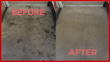 Pet mess carpet cleaning services in Rockville, MD
