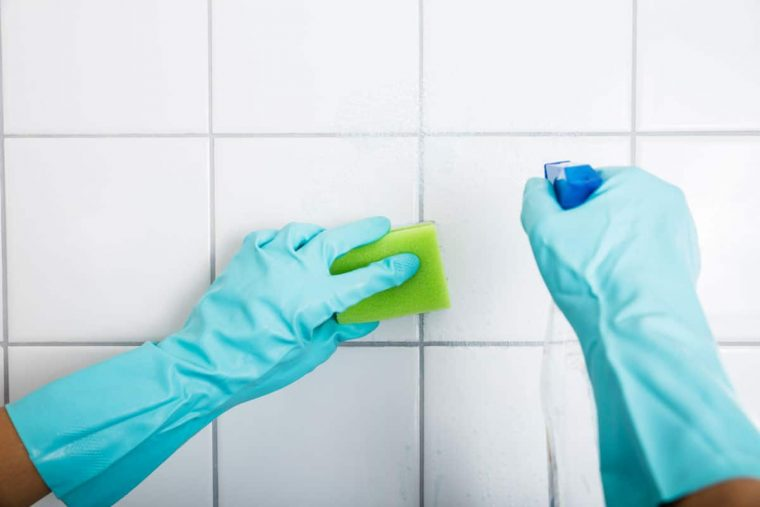Mold Removal, Germantown MD