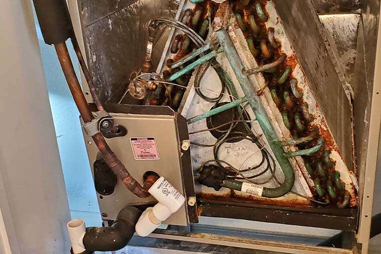 HVAC mold remediation in Silver Spring, MD