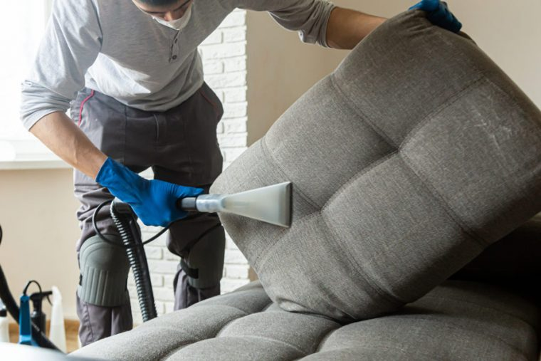 Man Cleaning Couch Cushion for Upholstery Cleaning in Herndon